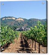 Ledson Winery And Vineyard Sonoma County California Acrylic Print