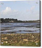 Lelant Water Hayle Estuary Acrylic Print
