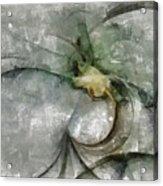 Lemniscatic Fancy  Id 16098-021154-72820 Acrylic Print