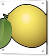 Lemon Fruit Outlined Acrylic Print