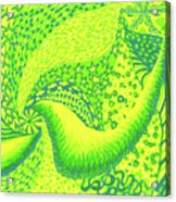 Lemon Lime Acrylic Print
