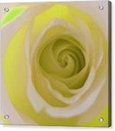 Lemon Lime Love Acrylic Print