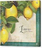 Lemon Tree - Limone Citrus Medica Acrylic Print