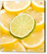 Lemons And One Lime Abstract Acrylic Print