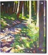 Lena Lake Trail I Acrylic Print