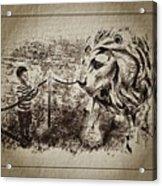 L'enfant Et Le Lion  Acrylic Print