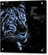 Leopard In The Darkness.  Acrylic Print