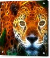 Leopard Watching At His Prey Acrylic Print