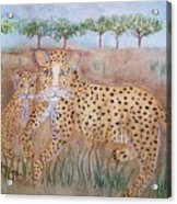Leopard With Cub Acrylic Print