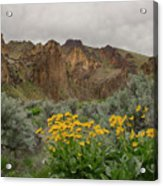 Leslie Gulch Sunflowers Acrylic Print