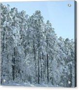 Let It Snow 3 Acrylic Print