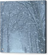 Let It Snow Acrylic Print by Lori Frisch