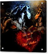 Let Me Be Your Wild Stallion Acrylic Print