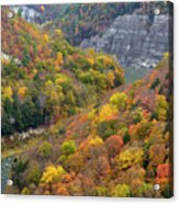 Letchworth Falls Sp Fall Colored Gorge Acrylic Print