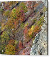 Letchworth Falls State Park Fall Colors Acrylic Print