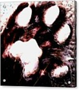 Lets Paws For A Moment Acrylic Print