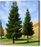 Let's Play Golf 010 Acrylic Print