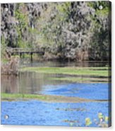 Lettuce Lake With Bridge Acrylic Print