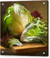 Lettuce Acrylic Print by Robert Papp