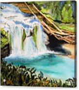 Lewis River Falls Acrylic Print