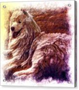 Lezhu Acrylic Print