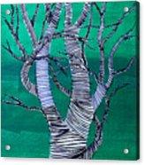 Lib-710 Acrylic Print