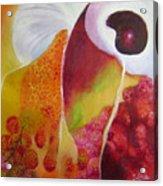 Lichee Patterns Acrylic Print