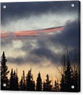 Licorice In The Sky Acrylic Print
