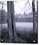 Liesilampi 4 Acrylic Print
