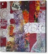 Life Cycle Acrylic Print