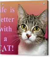 Life Is Better With A Cat Acrylic Print