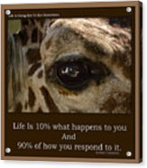 Life Is Going Eye To Eye Sometimes Acrylic Print