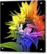 Life Is Like A Rainbow ... Acrylic Print by Gwyn Newcombe