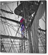Life On The Ropes Acrylic Print