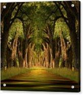 Life's Journey Acrylic Print