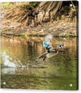 Liftoff In A Blur Of Color Acrylic Print