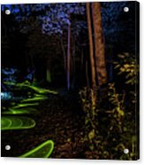 Lighit Painted Forest Scene Acrylic Print