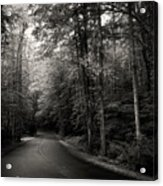 Light And Shadow On A Mountain Road In Black And White Acrylic Print