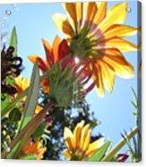 Light Life Beauty Death Acrylic Print