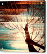 Light Melody Acrylic Print