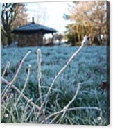 Light Morning Frost Acrylic Print