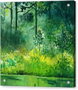 Light N Greens Acrylic Print