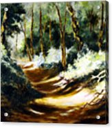 Light N Shade Acrylic Print