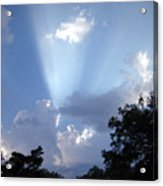Light Of Day Acrylic Print