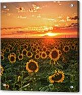 Light Of The Plains Acrylic Print