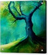 Light On A Dead Tree Acrylic Print