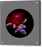 Light Play Rose Acrylic Print