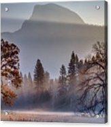 Light Rays In Yosemite Ground Fog Acrylic Print