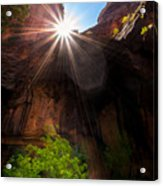 Light Shine Down Acrylic Print