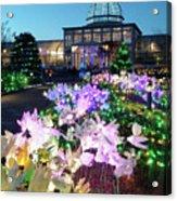 Lighted Flowers Acrylic Print